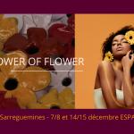 sarreguemines-espace-louvain-decembre-19
